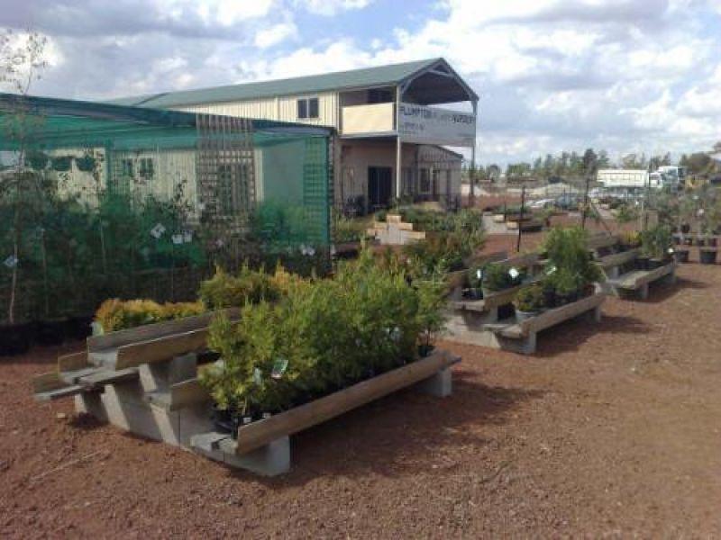 Plumpton Nursery and Garden Supplies