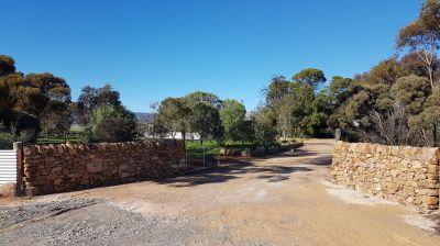 5 Acre Farm peace and sereniity