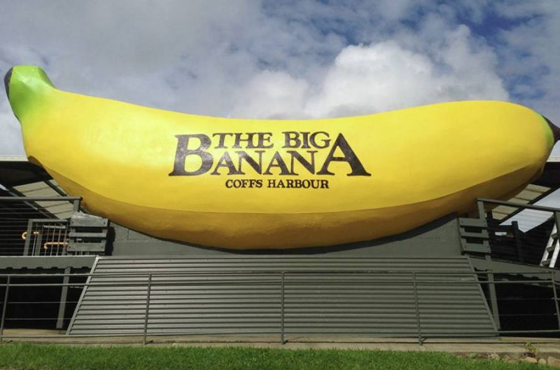 OPPORTUNITY AT THE BIG BANANA
