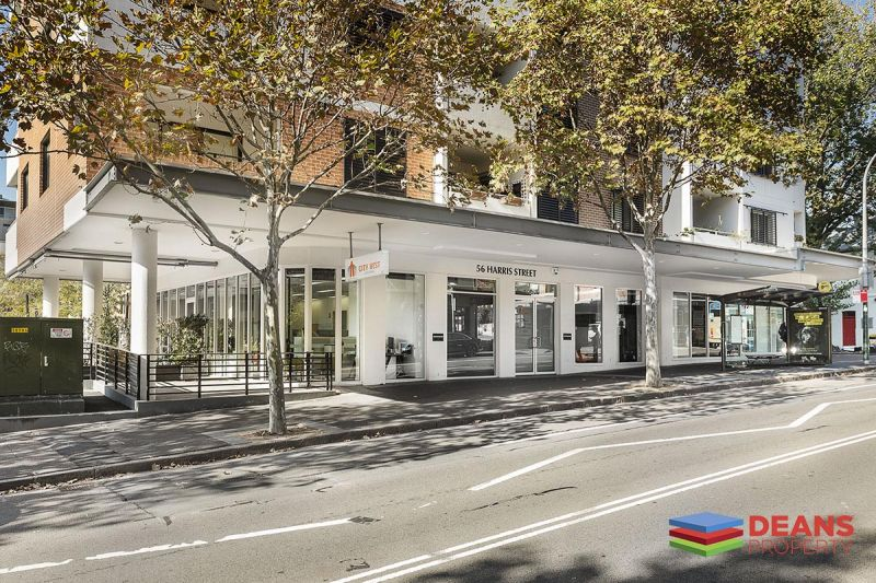 Stunning Ground Floor Suite in Pyrmont + 5 Secure Car Space